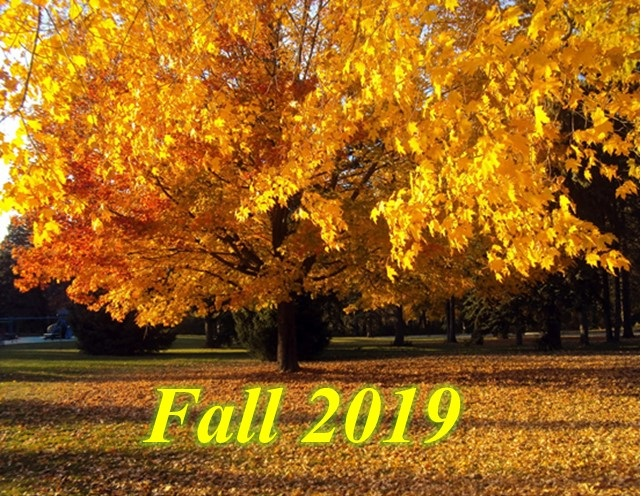 This image has an empty alt attribute; its file name is fall-2019-image.jpg